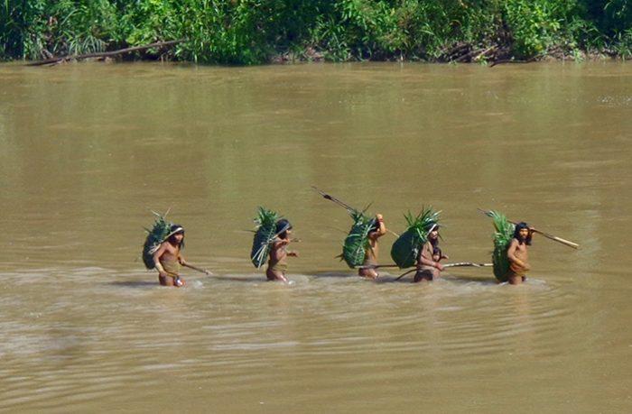 indigenas-en-aislamiento-szf-700x459_Mincu